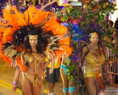 fantasy_fest_parade_2014_key_west_fl_3117-4682-960-640-85-wm-right_bottom-100-wmpng